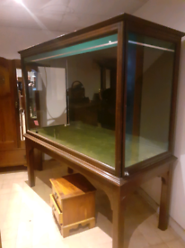 Very large antique taxidermy cabinet