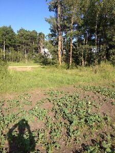 2 , 5 acre lots side by side