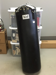 Punching bag with Speed ball