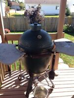 Large Big Green Egg - Smoker/oven/grill