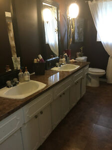 Room with private entrance - New Dundee Kitchener / Waterloo Kitchener Area image 4