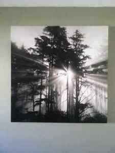 New large canvas picture (4ft by 4ft)