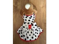 Dress for Chihuahua, Yorkshire terrier, puppy