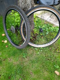 Pair of mountain bike wheels