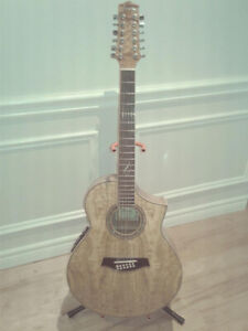 NEW Ibanez AEW 12 String Acoustic Electric Guitar