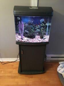 Aquarium + accessoire et meuble