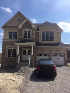 Newmarket Copper Hills 5 Bedrooms House for Rent