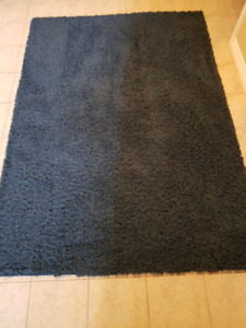 Blue Shag Carpet