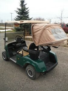 golf cart Kitchener / Waterloo Kitchener Area image 4