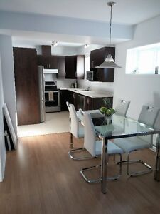 Appartement Cheval blanc 700$