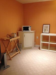 One Bedroom Basement Studio Suite