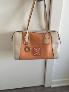 Women Bags/Purse - Ash(1) and Guess(1)