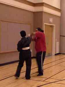 Do YOU qualify for FREE Martial Arts Classes??? Kitchener / Waterloo Kitchener Area image 10