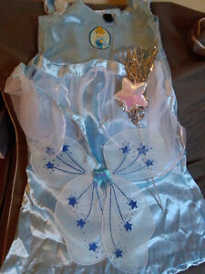 nice Cinderella costume with wing and hair accessory