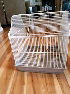 Budgie starter cage