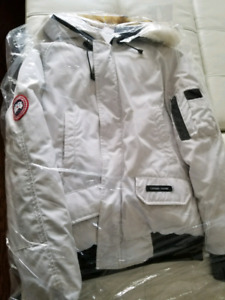 Canada goose Chilliwack bomber (authentic real)