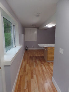Cozy, clean and private 1 bdrm apartment