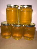 Raw Honey Unpasteurized local bee keepers $15