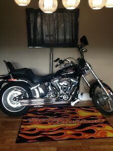 2007 Harley Softtail Custom