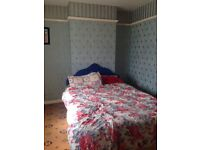 Cheap!!! One Bedroom to Let