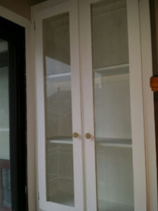 White Cupboard/Pantry Doors With Glass
