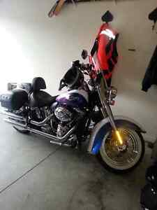Softail  deluxe London Ontario image 1