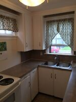 Downtown Ch'town March-May Furnished Rental