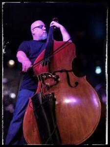 Double Bassist looking for projects