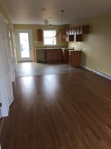 CONDOS FOR RENT ONLY $ 750.00 / MONTH !! St. John's Newfoundland image 6