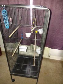 Large bird cage and accessories