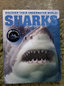 Sharks - illustrated book for kids like new
