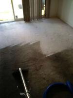 stream carpet
