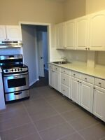 Renovated 2 bedroom in the glebe, dec 1