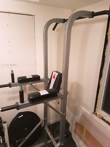 Chin up/dip workout exercise equipment