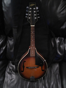 Mandolin and carry case 120$