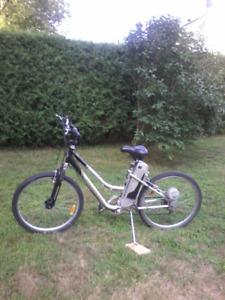 vélo électrique à vendre