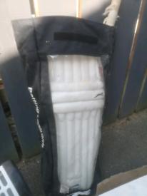 Cricket pads and bat