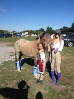 Fall Horseback Riding Lesson Registration