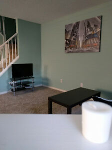ALL INCLUSIVE- LUXURY Student Home near UWO (3 rooms available) London Ontario image 4