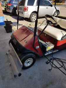 EZGO Electric Golf Cart for sale Windsor Region Ontario image 1