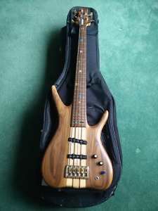 Unique 5 string bass with Nordstrand pickups for sale