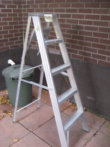 LADDER AND SAW for  $100.00