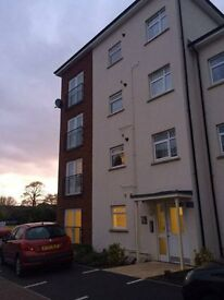 One Bedroom Flat for Rent in Pinhoe, Exeter