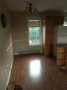 Large One Bedroom 2 level with recroom