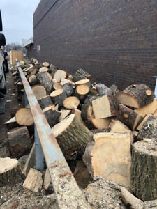 LOTS of FREE Assorted Firewood -
