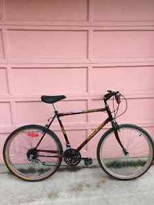 Collection of Affordable Commuters