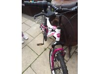 Girls muddy fox mountain bike