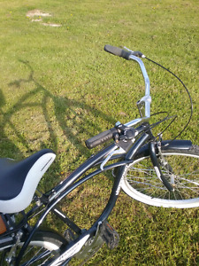 Vagabond Wasaga Cruiser bicycle for sale