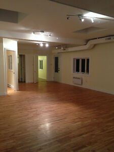 Unique Loft with 3 rooms - Short walk to McGill and John Abbott