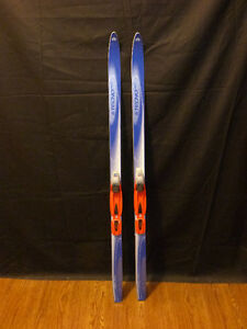 Cross Country  Junior (small adult) skis